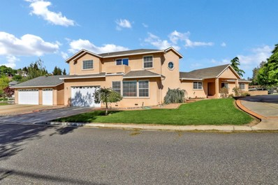 11001 White Oak Lane, Oakdale, CA 95361 - MLS#: 19021776