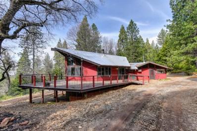 6420 Starkes Grade Road, Pollock Pines, CA 95726 - #: 19021852