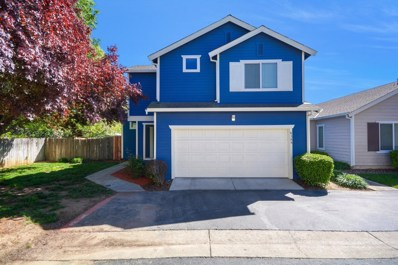 6388 Laguna Mirage Lane, Elk Grove, CA 95758 - #: 19022752