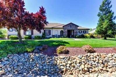 9756 Silvergate Lane, Elk Grove, CA 95624 - #: 19022888