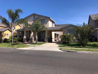 1311 Shearwater Drive, Patterson, CA 95363 - MLS#: 19023354