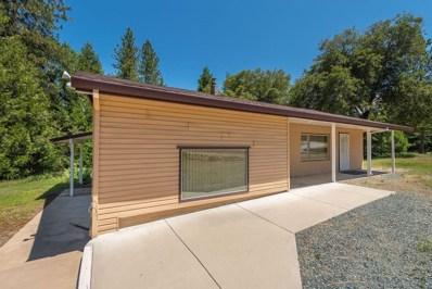 15833 Pioneer Creek Rd., Pioneer, CA 05666 - MLS#: 19024161