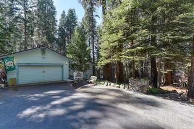 3205 Castlewood Circle, Pollock Pines, CA 95726 - #: 19024548