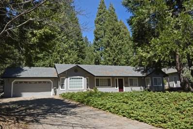 6161 Dolly Varden Lane, Pollock Pines, CA 95726 - #: 19024650