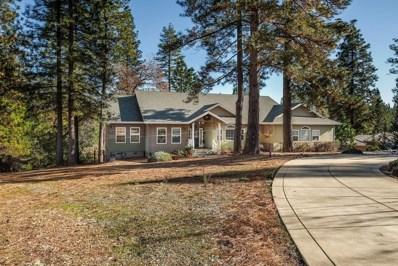 13590 Elderberry Court, Pine Grove, CA 95665 - MLS#: 19025006