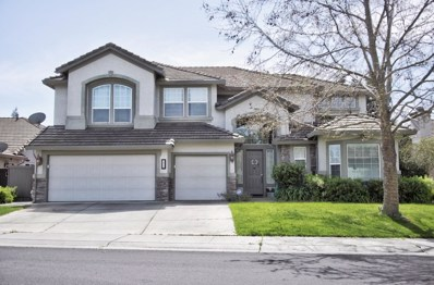 2820 W Pintail Way, Elk Grove, CA 95757 - #: 19025053