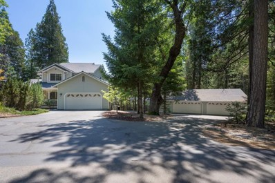 2000 King Of The Mountain Court, Pollock Pines, CA 95726 - #: 19025061