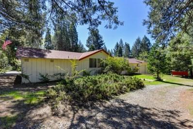 5310 Gilmore Road, Pollock Pines, CA 95726 - #: 19025087