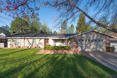 13561 Marko Lane, Pine Grove, CA 95665 - MLS#: 19025651
