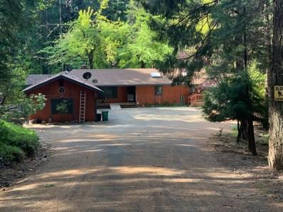 2320 Old Blair Mill Road, Pollock Pines, CA 95726 - #: 19025905