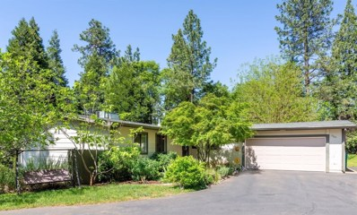 2960 Toomes Lane, Camino, CA 95709 - #: 19026036