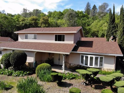4554 French Creek Road, Shingle Springs, CA 95682 - #: 19027284