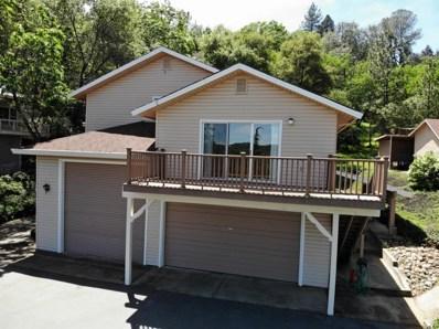 4562 French Creek Road, Shingle Springs, CA 95682 - #: 19027309