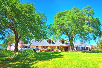 4331 Oak Meadow Road, Placerville, CA 95667 - #: 19028152