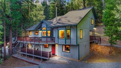 4961 Pine Tree Lane, Pollock Pines, CA 95726 - #: 19028871