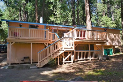 2850 Lilac Road, Pollock Pines, CA 95726 - #: 19029753