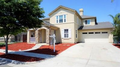 1389 Shearwater Drive, Patterson, CA 95363 - MLS#: 19030352