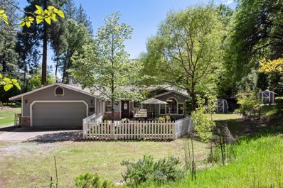 5260 Shooting Star Road, Pollock Pines, CA 95726 - #: 19031132