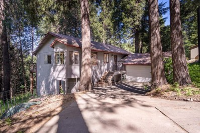 2501 Newhouse Road, Pollock Pines, CA 95726 - #: 19032283