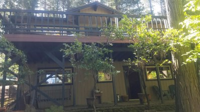 6080 Speckled, Pollock Pines, CA 95726 - #: 19033361