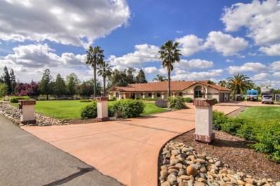 10329 Linscott Court, Elk Grove, CA 95624 - #: 19035017