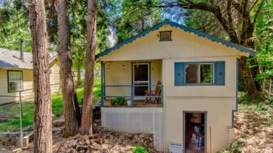 6270 Pony Express Trail, Pollock Pines, CA 95726 - #: 19037798