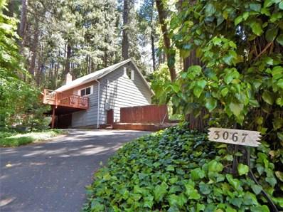 3067 Hazel Street, Pollock Pines, CA 95726 - #: 19037900