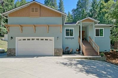 4128 Sierra Springs, Pollock Pines, CA 95726 - #: 19038065