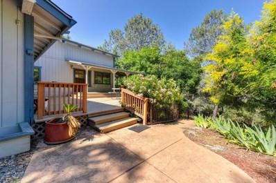 1140 Large Oak Drive, Placerville, CA 95667 - #: 19041172