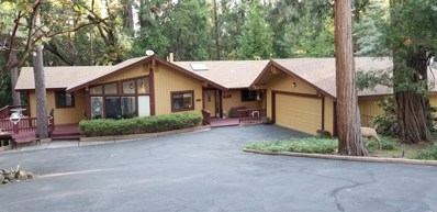 4511 Sierra Springs Drive, Pollock Pines, CA 95726 - #: 19041757