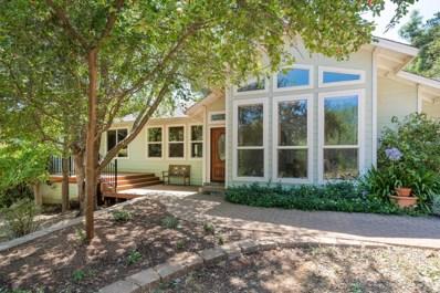 4308 Childhood Lane, Shingle Springs, CA 95682 - #: 19041954