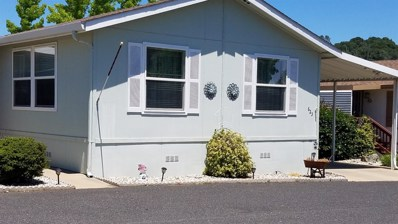 18717 Mill Villa Rd 623 UNIT 623, Jamestown, CA 95327 - #: 19043228