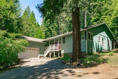 3165 Gold Ridge Trail, Pollock Pines, CA 95726 - #: 19043490