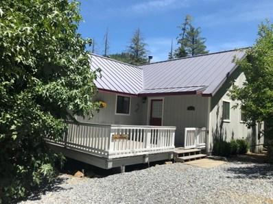 3039 Randall Tract Lane, Pollock Pines, CA 95726 - #: 19044656