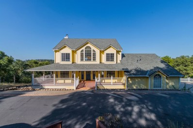 4970 Grazing Hill Road, Shingle Springs, CA 95682 - #: 19046416