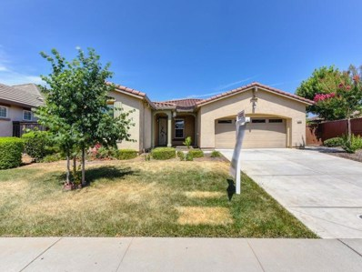 9885 Bluefin Way, Elk Grove, CA 95757 - #: 19046824