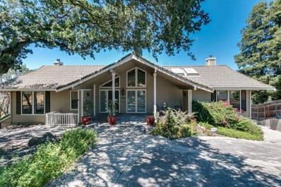 10007 River Oak Circle, Oakdale, CA 95361 - MLS#: 19049189
