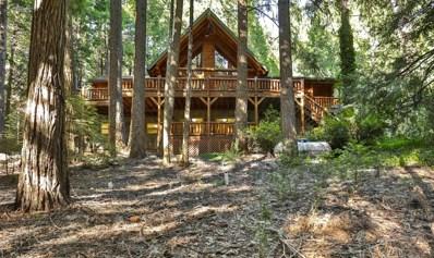 2900 Amber Trail, Pollock Pines, CA 95726 - #: 19049645
