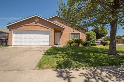 1463 Chianti Drive, Livingston, CA 95334 - #: 19052280