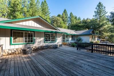 22901 Van De Hei Ranch Road, Pioneer, CA 95666 - #: 19052355