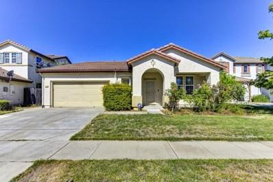 10286 Gilliam Drive, Elk Grove, CA 95757 - #: 19052381