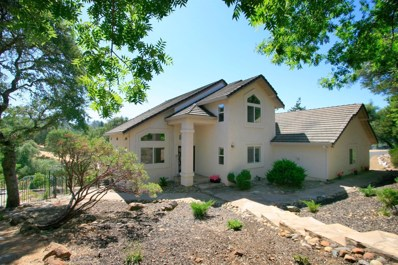 4966 Goldfield Way, Placerville, CA 95667 - #: 19053217