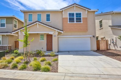 8428 Amber Valley Lane, Elk Grove, CA 95758 - #: 19053685