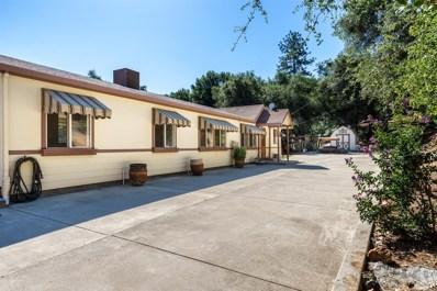 18761 Kirks Road, Sonora, CA 95370 - #: 19054003