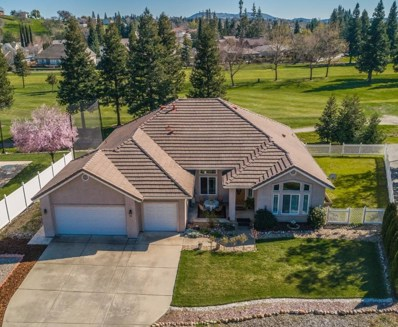 50 Saint Andrews Road, Valley Springs, CA 95252 - MLS#: 19055200