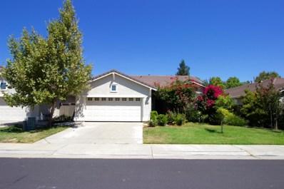 3009 Tree Swallow Circle, Elk Grove, CA 95757 - #: 19057779