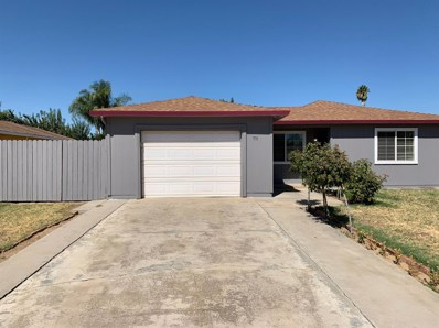 771 East Avenue, Livingston, CA 95334 - #: 19059105