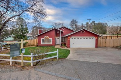 4391 Blanchard Road, Placerville, CA 95667 - #: 19059513
