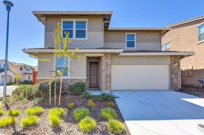 8434 Stellata Lane, Elk Grove, CA 95758 - #: 19060488