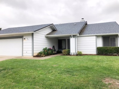 9928 Falcon Meadow Drive, Elk Grove, CA 95624 - #: 19061050